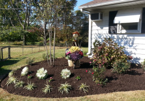 decorative-and-seasonal-landscaping
